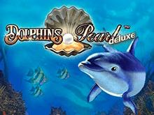 Dolphin's Pearl Deluxe в казино