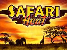 Автомат Safari Heat в казино