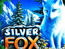 Автомат Silver Fox с бонусами