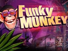 Забавная Обезьяна на деньги в онлайн-казино