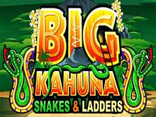 Big Kahuna Snakes And Ladders от Microgaming – игровой автомат с щедрыми призами и бонусами онлайн