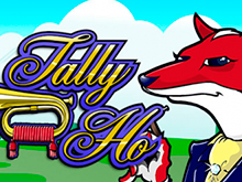 Бонусные раунды, фриспины, Вайлды и Скаттеры в Tally Ho